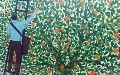 Florida Citrus: Nokomis Groves